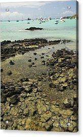 Puerto Ayora Acrylic Print