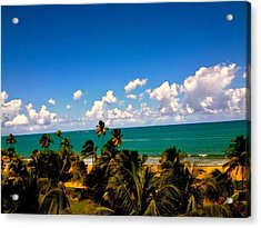 Puerto Rican Escape  Acrylic Print by Danielle  Broussard