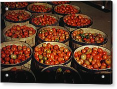 Puerto Rico Tomatoes Acrylic Print by Granger