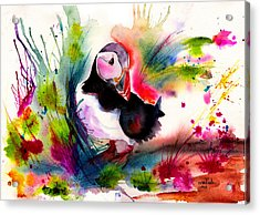 Puffin Acrylic Print by Isabel Salvador