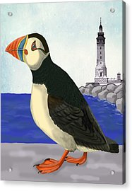 Puffin On The Quay Acrylic Print by Loopylolly