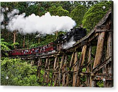 Puffing Billy Acrylic Print by Kim Andelkovic