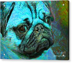 Pug 20130126v5 Acrylic Print by Wingsdomain Art and Photography