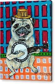 Pug Playing Banjo Acrylic Print by Jay  Schmetz