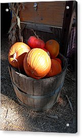 Pumpkin Barrel Acrylic Print by Mark Barclay