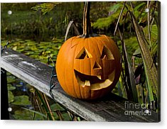 Pumpkin By The Pond Acrylic Print