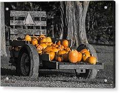 Pumpkin Cart Acrylic Print