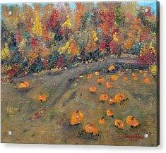 Pumpkin Field Acrylic Print by Judith Rhue