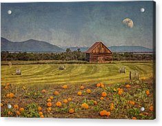 Acrylic Print featuring the photograph Pumpkin Field Moon Shack by Patti Deters
