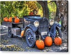 Pumpkin Hoopie Acrylic Print