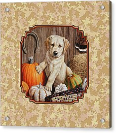 Pumpkin Puppy Leafy Background Acrylic Print