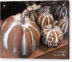 Pumpkins And Gourds Fall Autumn Brown White Pumpkins - Colors Of Autumn Acrylic Print by Kathy Fornal