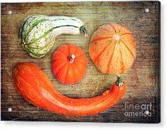 Pumpkins Acrylic Print by Angela Bruno