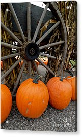 Pumpkins With Old Wagon Acrylic Print by Amy Cicconi