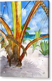 Punta Cana Beach Palm Acrylic Print by Carlin Blahnik