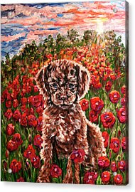 Puppy And Poppies Acrylic Print