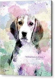 Puppy Love Acrylic Print by Gary Bodnar
