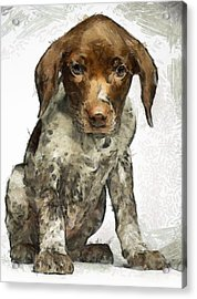 Acrylic Print featuring the painting Pupy by Georgi Dimitrov