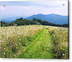 Purchase Knob Acrylic Print by Melinda Fawver