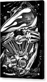 Pure Harley Chrome Acrylic Print by Tim Gainey