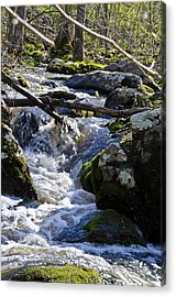 Pure Mountain Stream Acrylic Print by Bill Cannon