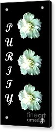 Purity Inspirational Art Collection By Saribelle Rodriguez Acrylic Print by Saribelle Rodriguez