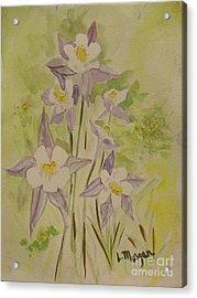 Purple And White Columbines Acrylic Print
