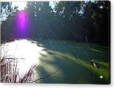Purple Angel Of Lagoon Acrylic Print by Phoenix The Moody Artist