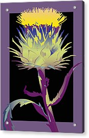Purple-black Thistle Acrylic Print
