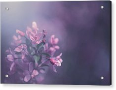 Purple Acrylic Print by Carrie Ann Grippo-Pike