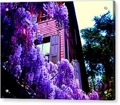 Acrylic Print featuring the photograph Purple Cheer by Zafer Gurel