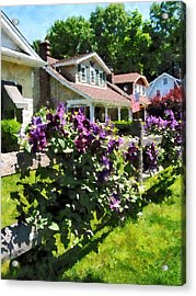 Purple Clematis On Rustic Fence Acrylic Print by Susan Savad