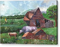 Purple Cow And Barn Acrylic Print by William Killen