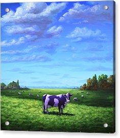 Purple Cow Acrylic Print