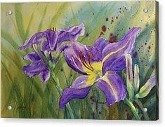 Purple Day Lily Acrylic Print