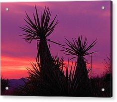 Purple Desert Acrylic Print