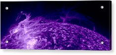 Purple Dragon Acrylic Print by Sunny Day