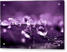 Purple Droplets Acrylic Print