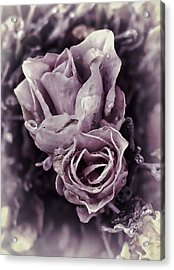 Purple Elegance Acrylic Print
