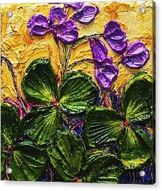 Purple Flowers Shamrocks Acrylic Print by Paris Wyatt Llanso