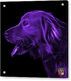 Purple Golden Retriever - 4047 F Acrylic Print