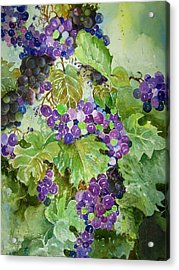Purple Grapes Acrylic Print