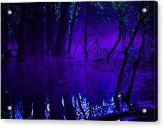 Purple Haze Acrylic Print by Valarie Davis