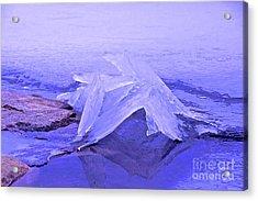Purple Ice Acrylic Print by Randi Shenkman