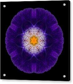Purple Iris II Flower Mandala Acrylic Print