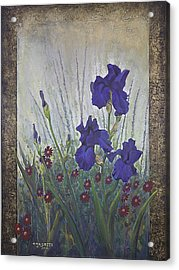Purple Iris Acrylic Print by Rob Corsetti