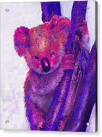 Purple Koala Acrylic Print by Jane Schnetlage