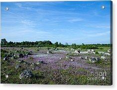 Acrylic Print featuring the photograph Purple Landscape by Kennerth and Birgitta Kullman