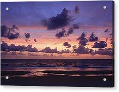 Purple Morning Acrylic Print by Kimberly Oegerle