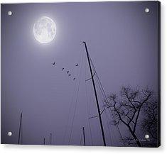 Purple Night Acrylic Print by Brian Wallace